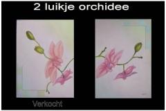 Orchidee-2-luik op doek 30x40 cm