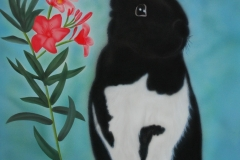 konijn Binky op Trespa 40x50 cm