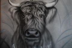 Highland-cow-op-doek-50x60-cm