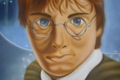 harry-potter op Doek 40x50 cm